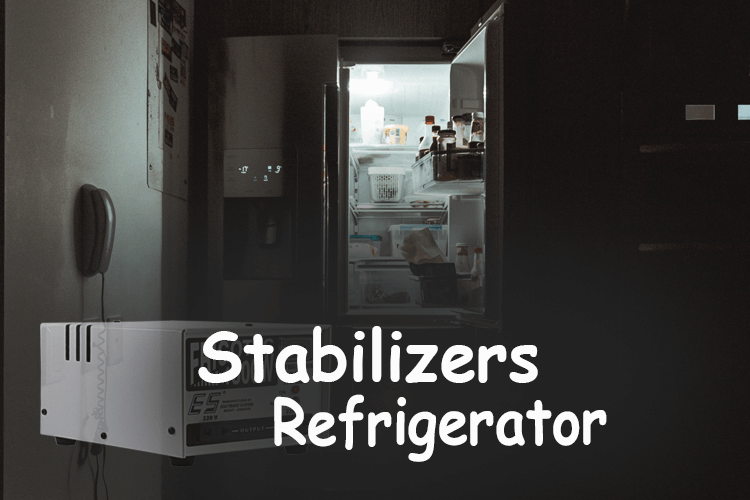 Stabilizier for refrigerator